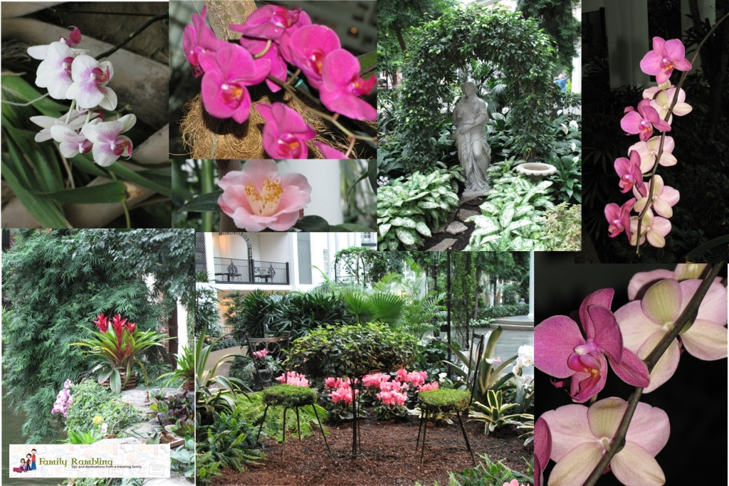 Flowers in the Delta Gaylord Opryland Hotel