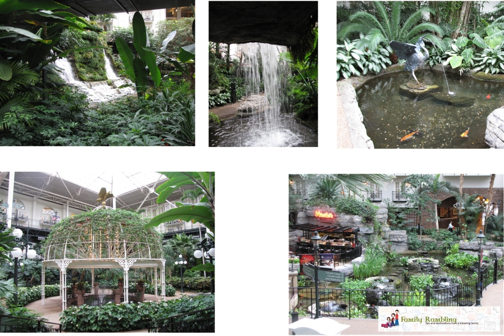 Cascades and Garden Conservatory Gaylord Opryland Hotel