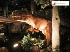 Baby T-Rex, Dinosaurs Unearthed, Union Station