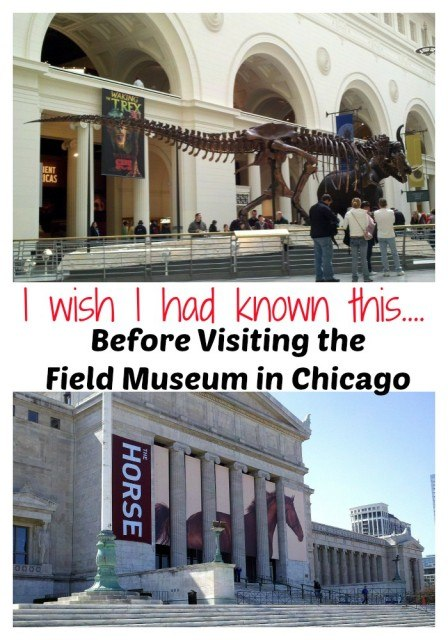 I wish I had known this before visiting the Field Museum in Chicago