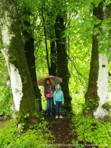Rainy day at Birr castle