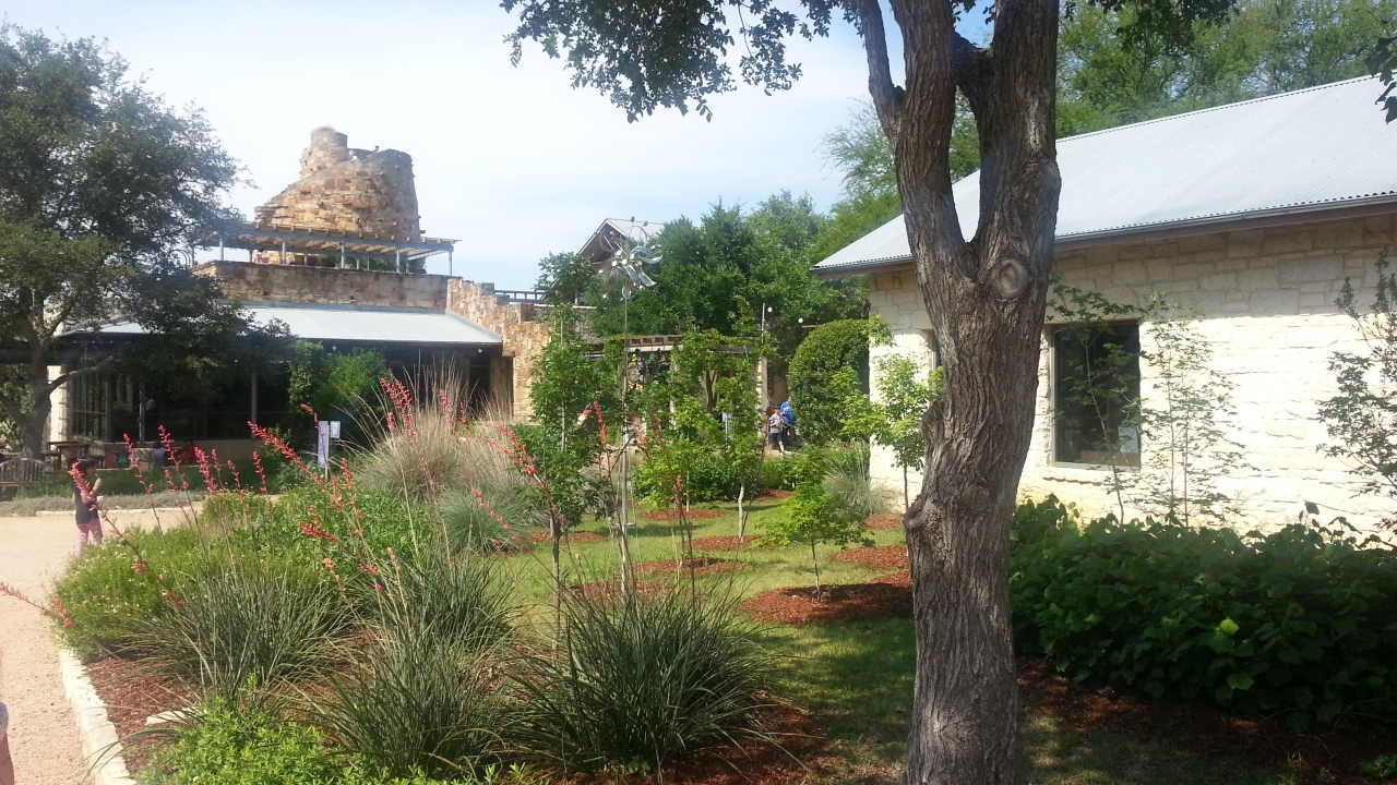 Lady Bird Johnson WIldflower Gardens