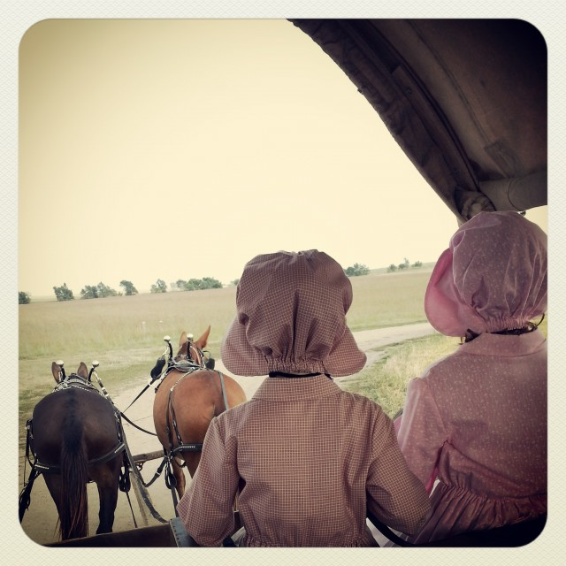Driving the Covered Wagon at Ingalls Homestead, DeSmet, South Dakota