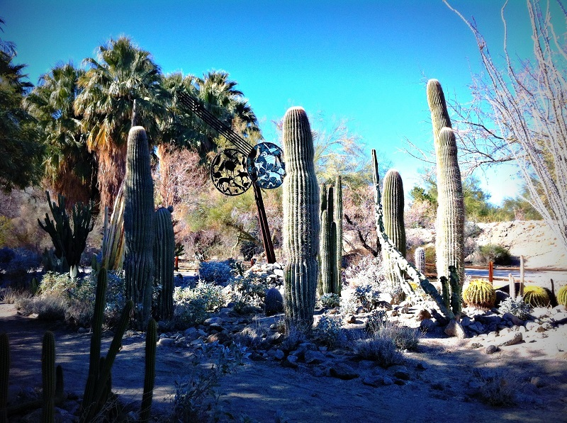 Family-Friendly Palm Springs and the Coachella Valley
