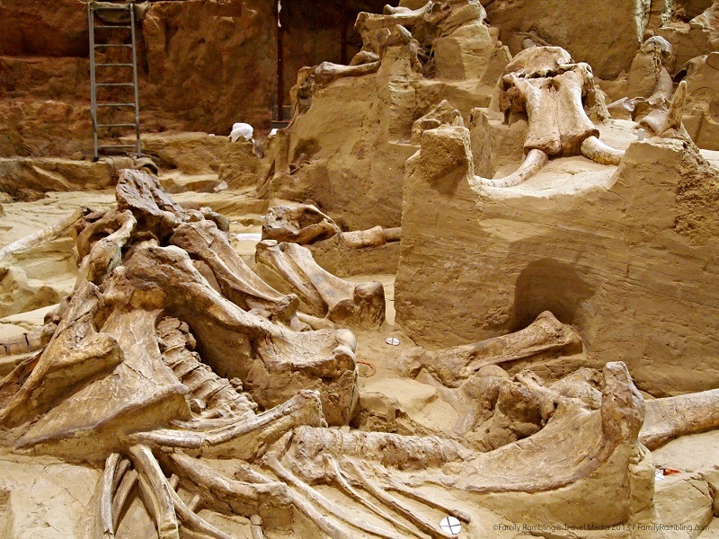 The Mammoth Site, Hot Springs, South Dakota