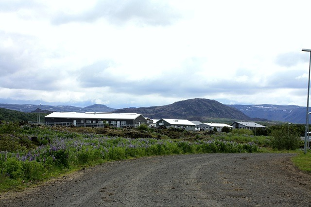 Ishestar Horse Ranch, Iceland vacation