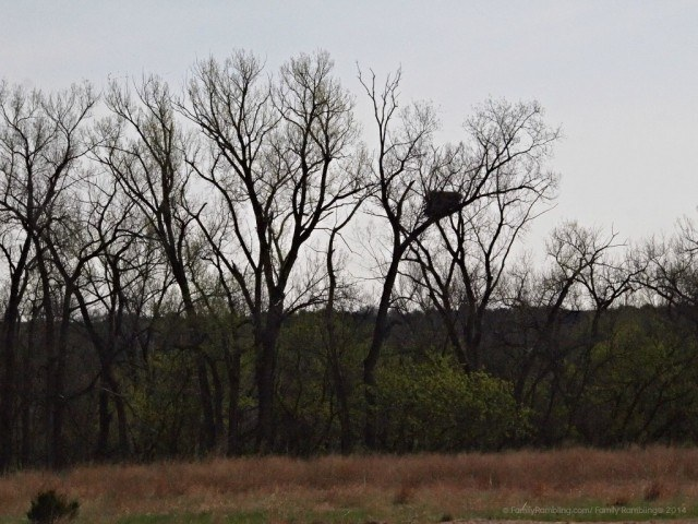 Eagles Nest Carl Mundt Wildlife Refuge, South Dakota
