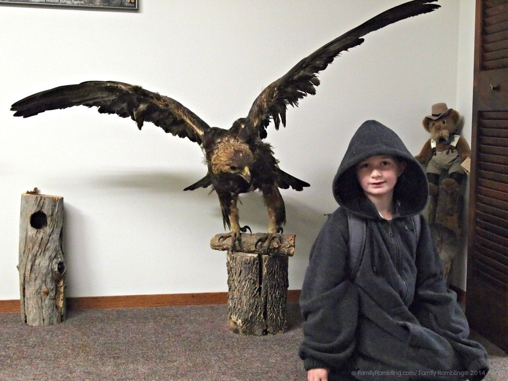 Learning About Birding at the South Dakota Birding Festival