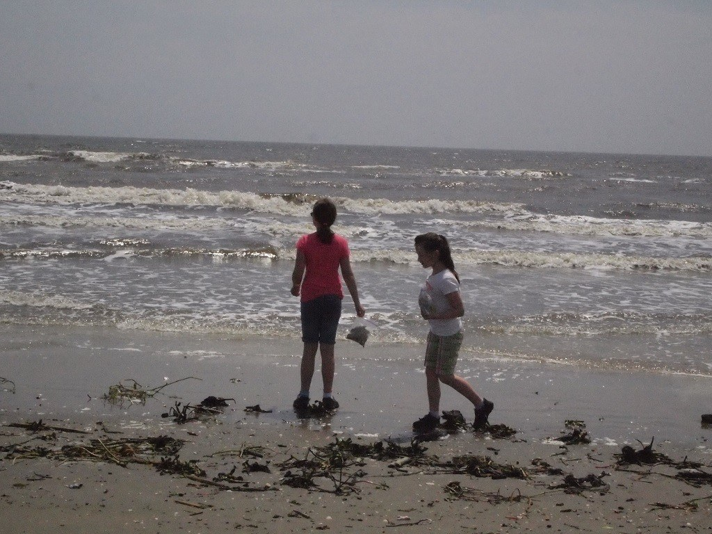 Hunting shells on Holly Beach along the Creole nature Trail near Lake Charles, Louisiana.