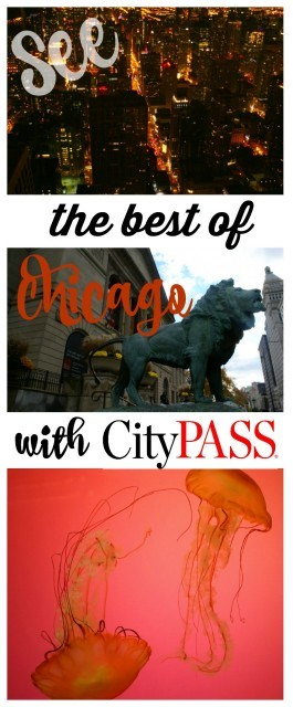 The best deal in Chicago! Save money and time with City Pass. Chicago travel tips