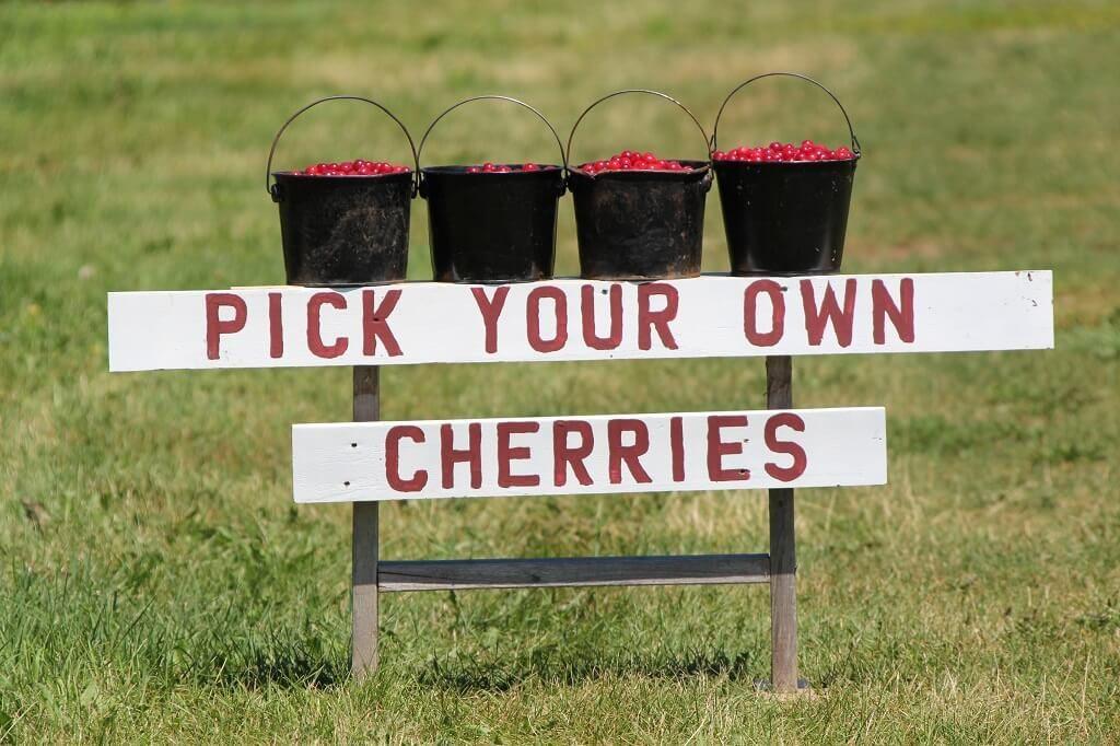 Pick Your Own Cherries Sign, Door County, Wisconsin - photo credit Door County Visitor Bureau