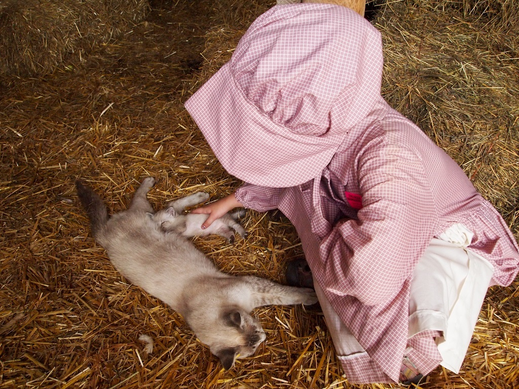 Tending the cats, Ingalls Homestead, DeSmet, South Dakota