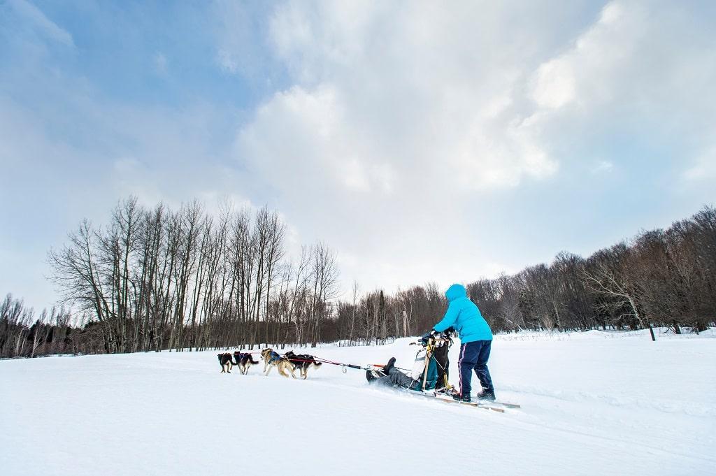 Dog Sledding in the Upper Peninsula