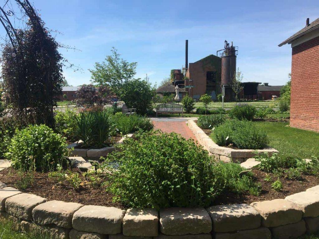 Medicinal_Plant_Garden_Indiana_Medical_History_Museum