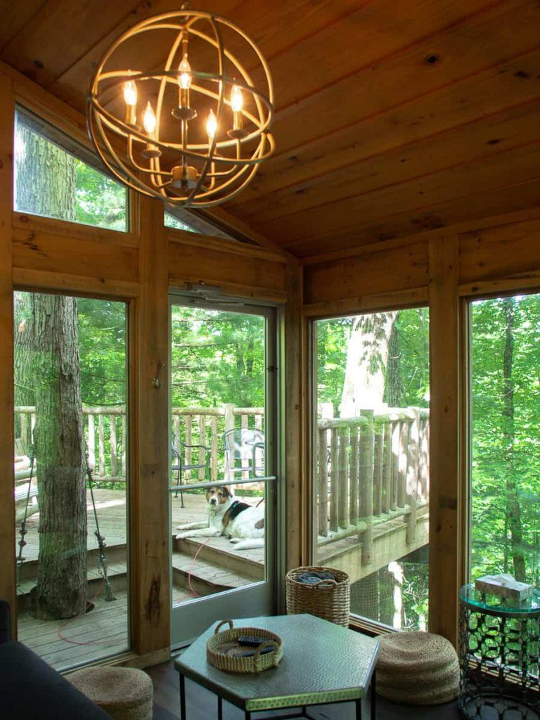 dog_the_view_treehouse_mohicans_ohio