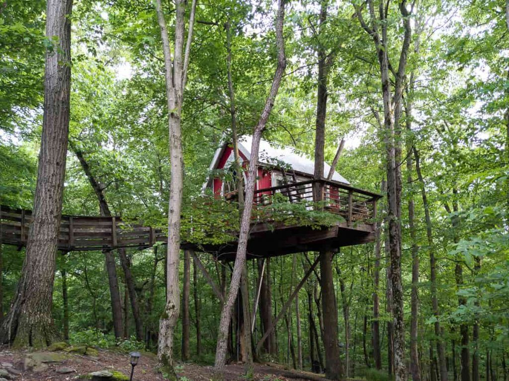 Little-Red-Treehouse_The_Mohicans_Ohio